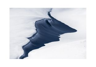 Alpine Meadow  Prints Nature & Scenery