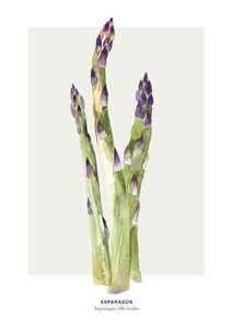 Asparagus  Prints Kitchen