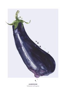 Aubergine  Prints Kitchen