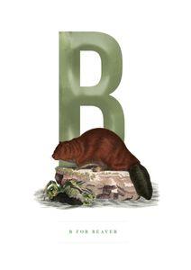 B For Beaver  Posters Posters för barn