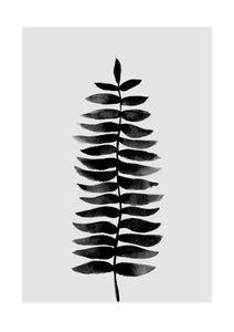 Black And White Fern  Prints Botanical prints