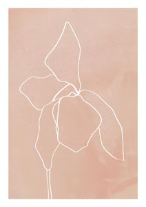 Bud Outline 1  Prints Botanical prints