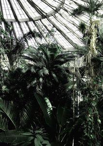 Copenhagen Greenhouse  Posters Natur & Landskap