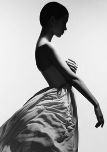 Dress Profile  Posters Fotokonst