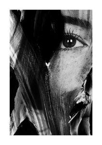 Face Studies 1  Posters Fotokonst