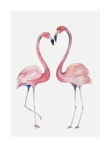 Flamingo Couple 2  Prints Animals & Insects