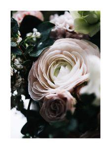Flower Bouqet  Posters Bestsellers