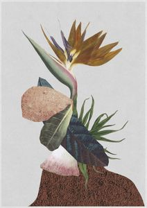 Flower Collage  Posters Grafiska motiv