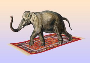 Flying Elephant  Prints Animals & Insects