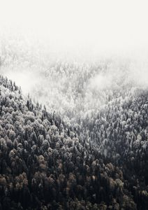 Foggy Mountains  Prints Nature & Scenery