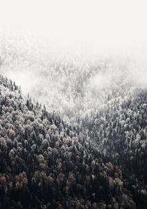 Foggy Mountains  Poster Natur & Landschaft