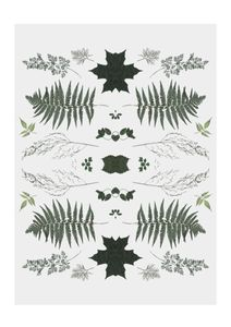 Herb Reflection  Affiches Designs graphiques