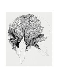 Iris  Prints Graphical prints
