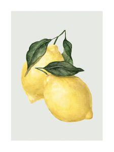 Lemon  Prints Kitchen
