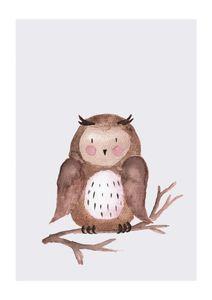 Lil Owl  Prints Kids Prints