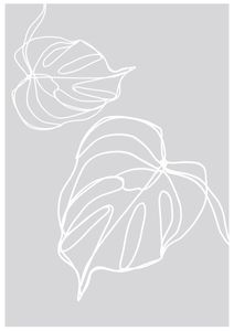 Monstera  Prints Botanical prints