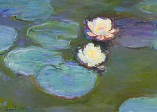 Nympheas By Monet  Prints New In