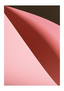 Paper Three  Prints Photography