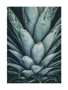 Pineapple Crown  Prints Bestsellers