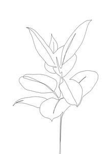 Plant Blueprint  Affiches Botanique