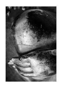 Sculptural  Prints Black & White Photography