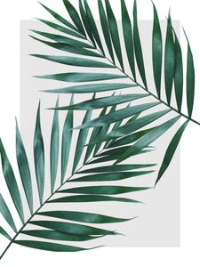 Sheer Leaves  Prints Graphical prints