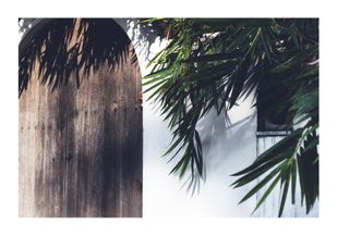 Southern Door  Posters Natur & Landskap