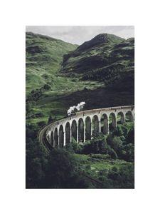Train On A Bridge  Prints Nature & Scenery