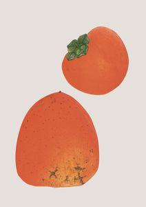 Vintage Persimmon  Affiches Designs graphiques