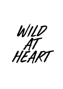 Wild At Heart  Posters Texttavlor
