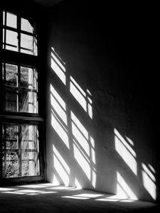 Window Reflection  Prints Bestsellers