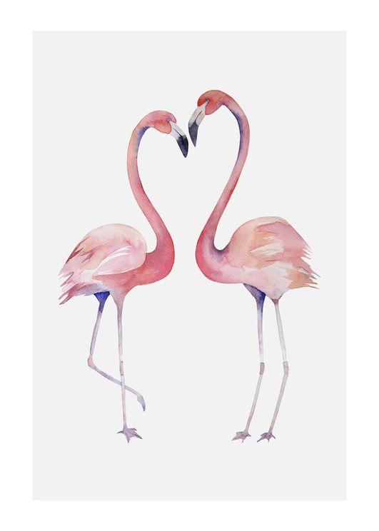 Flamingo Couple 2