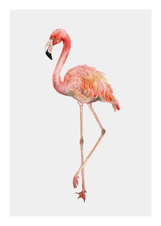 Flamingo In Watercolor