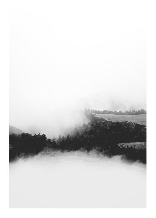 Foggy Valley