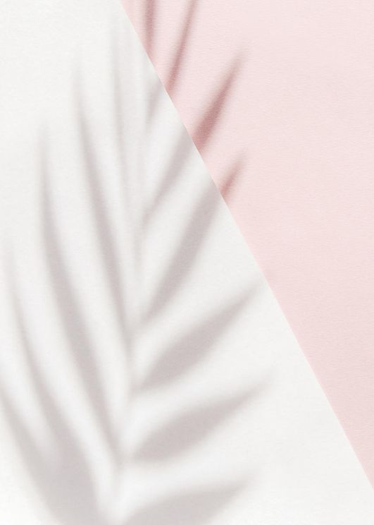 Pink Palm Shadow