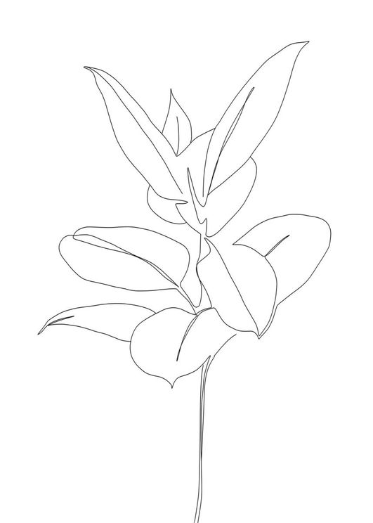 Plant Blueprint