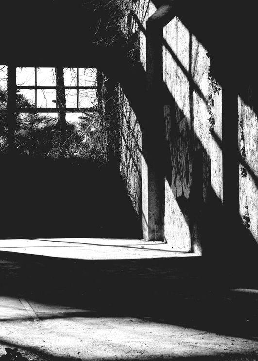 Ruin Reflection