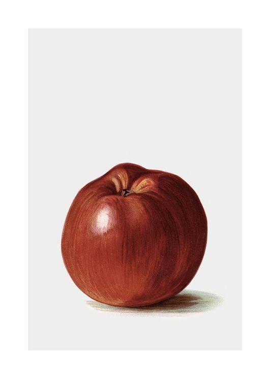 Swedish Apple