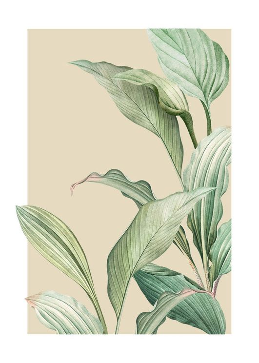 Vintage Palm Leaves