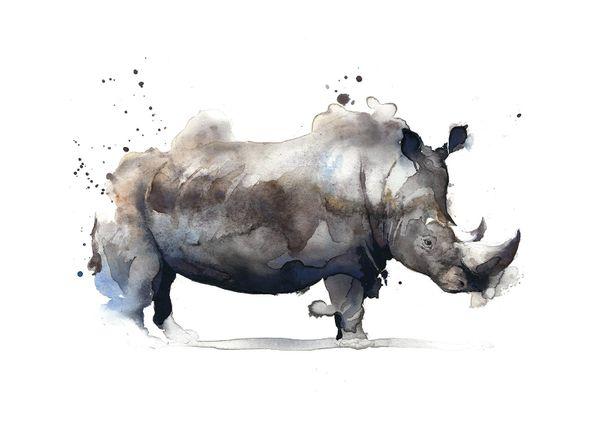 Watercolor Rhino